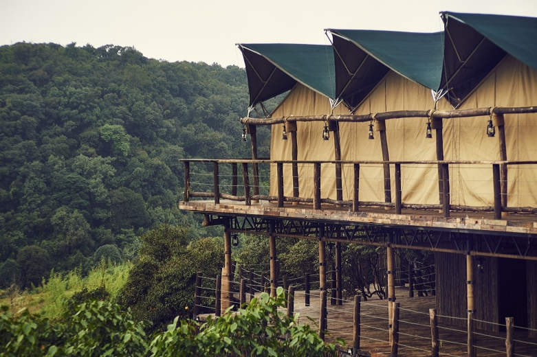 Vinetree · Gaoligong Tented Resort